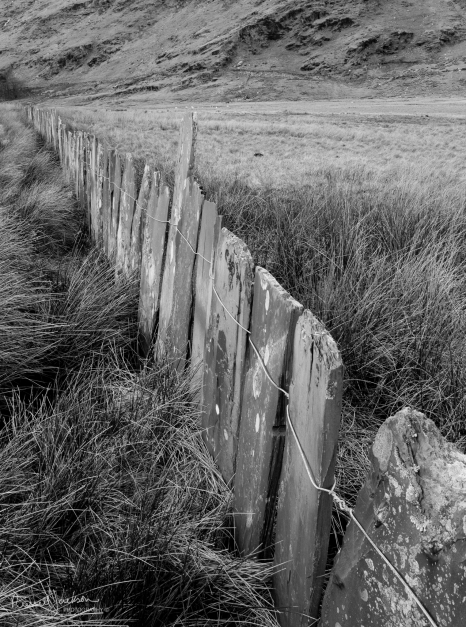 Slate fence, Cwmorthin, North Wales